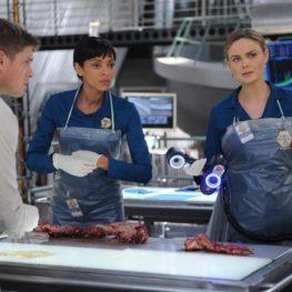 GO!SCAN 50 v seriálu Sběratelé kostí