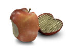 3DSystems-Software-Freeform-Lattice-Apple_0_4